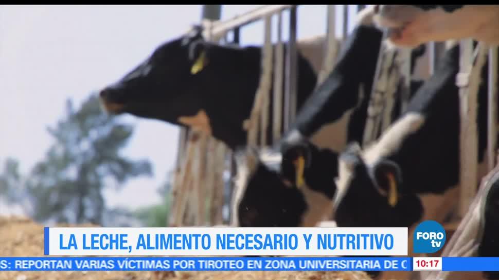 México, gasto en productos, consumo masivo, leche líquida