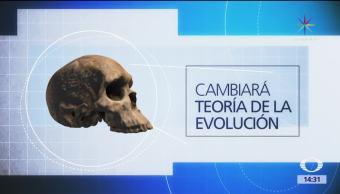 noticias, televisa, Especie humana, antigua, pensaba, Homo sapiens