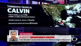 noticias, forotv, Alerta, tormenta tropicaL, Calvin, Oaxaca
