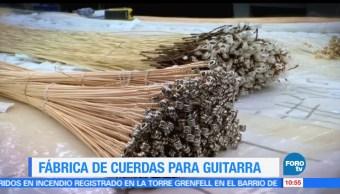 Enrique Muñoz, reportaje, fábrica de cuerdas, guitarra