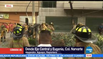 Cae árbol, avenida, Eugenia, CDMX, tráfico, equipos emergencia