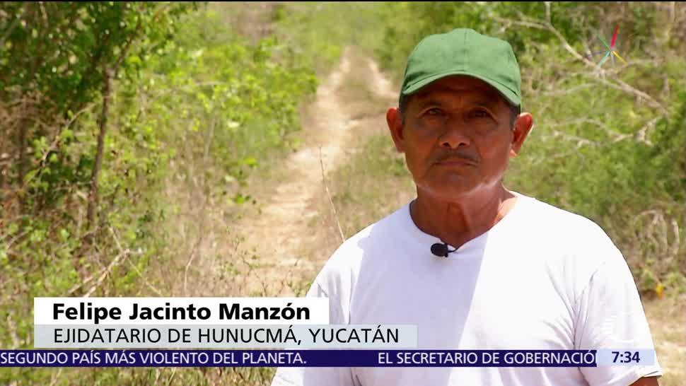Despojos, Roberto Borge, afectan, propietarios en Yucatán