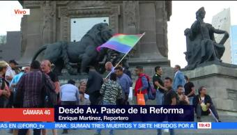 noticias, forotv, Todo listo, marcha gay, CDMX, gay