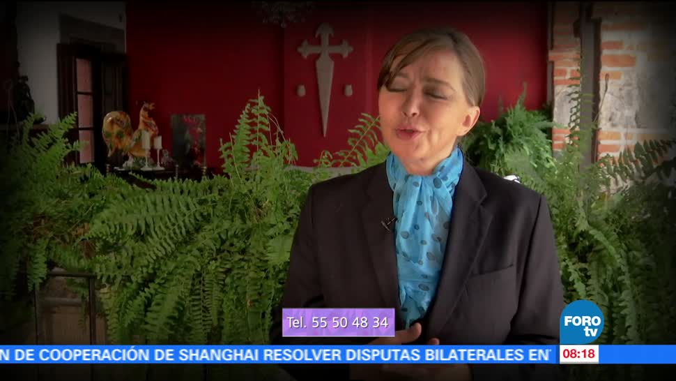 abogada, Ingrid Tapia, Los efectos, parentesco