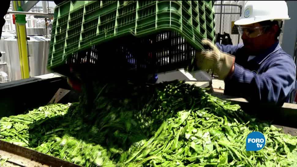 tratamiento integral, sitio, residuos orgánicos, Milpa Alta