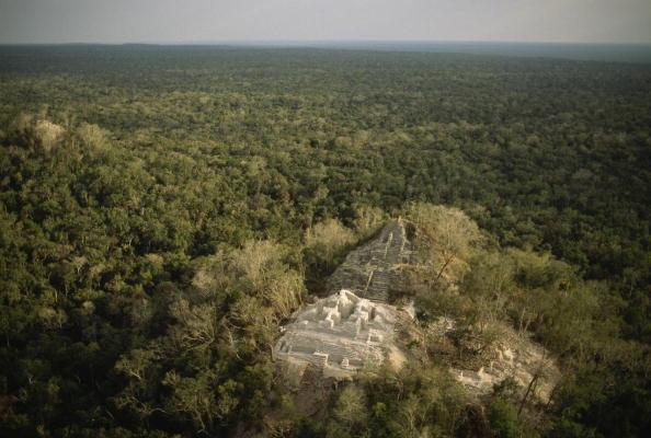 Reserva de la biósfera de Calakmul
