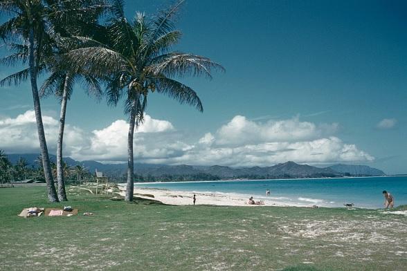 Sismo, meteorológico, Estados Unidos, Hawaii, sismológico, magnitud,