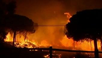 Un incendio en Huelva, España, obliga a evacuar a miles de personas (Twitter: @BFMTV)