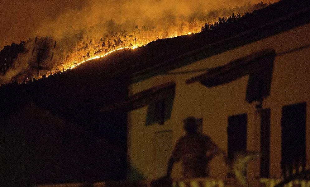 Muertos, Incendio, Forestal, Portugal, Heridos, Gobierno, Víctimas