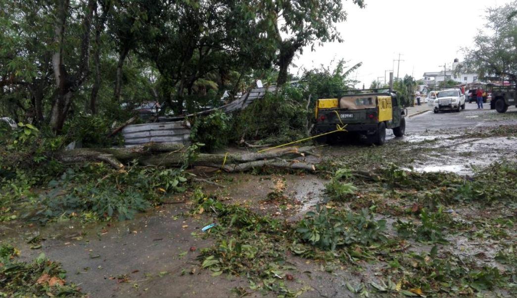 Militares retiran arbol tras granizada en tuxpan