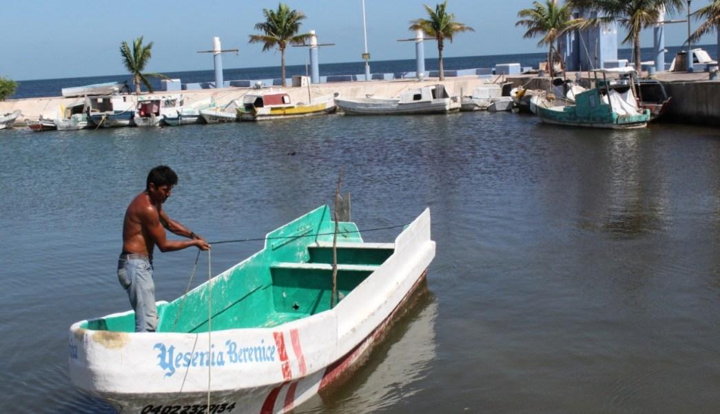 Verifican, Embarcaciones, Pesqueras, Campeche, Embarcaciones pesqueras, seguridad