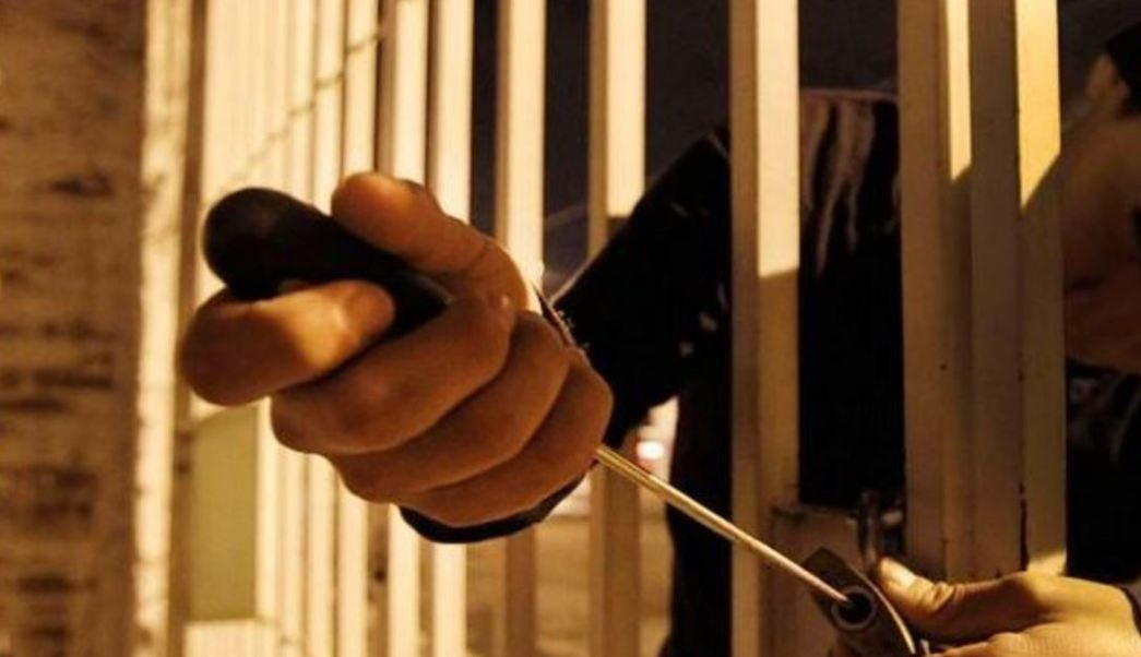 Robo a Casa Habitación, delincuencia, banda, delictiva, colombianos, ssp, robo