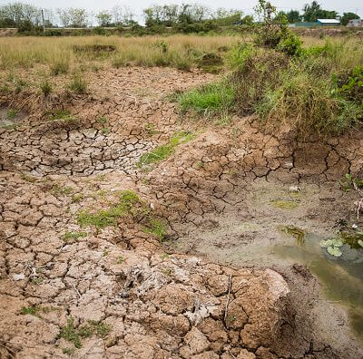 Sequía pone en riesgo cultivos en Ciudad Juárez, Chihuahua