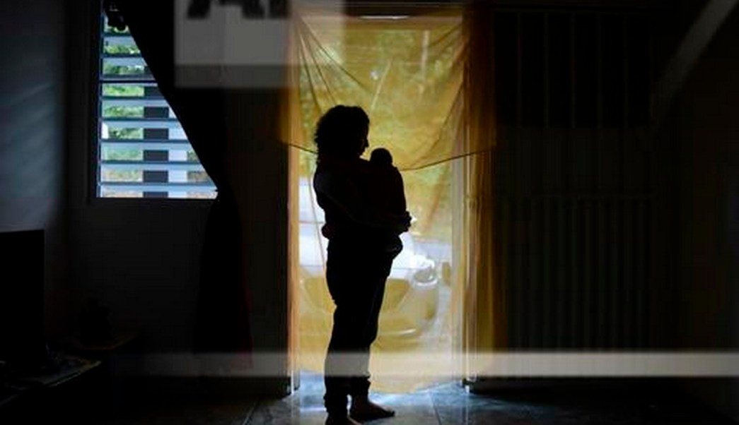 Uno de cada doce bebés de embarazadas con zika tiene defectos
