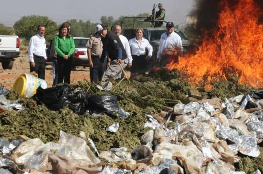Incineran más de seis toneladas de marihuana en Zacatecas. (Facebook: AccesoZac)