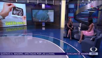 Regina Tamés, directora, Grupo de Información, Reproducción Elegida, derechos