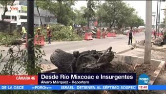 árbol, Río Mixcoac, Insurgentes, afectación vial