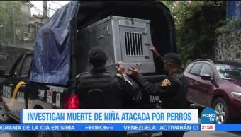 Investigan, muerte, niña, menor, atacada, perros, Coyoacán