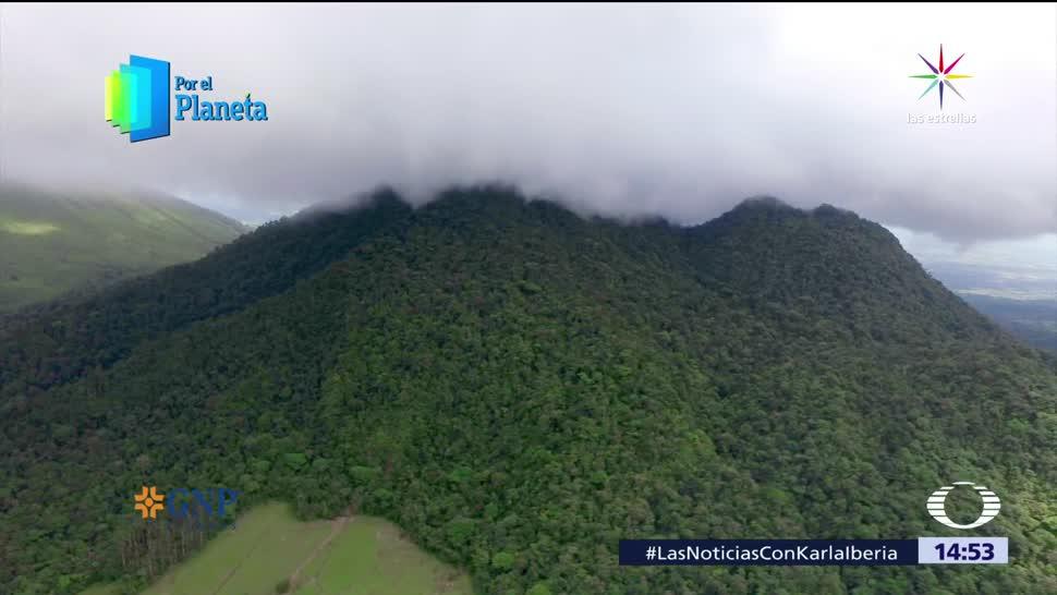 Costa Rica Paraiso Aves Cinco Principales Destinos Avistamiento Por El Planeta