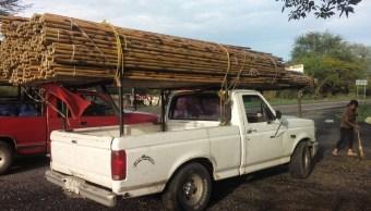 Aseguran en Nayarit bambú transportados ilegalmente