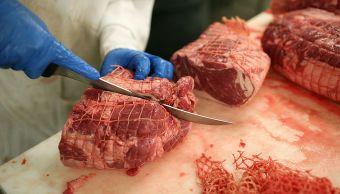 carne cruda, sangre, líquido rojo, comida, músculos