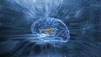 Cerebro, cirugía, salud, hidrocefalia, INNN, negligencia