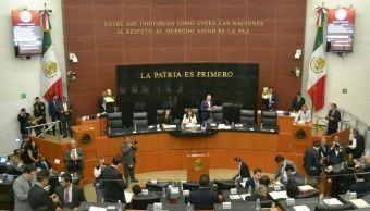 Ley Anticorrupción, Fiscal Anticorrupción, Senadores, Diputados, Noticias, Justicia