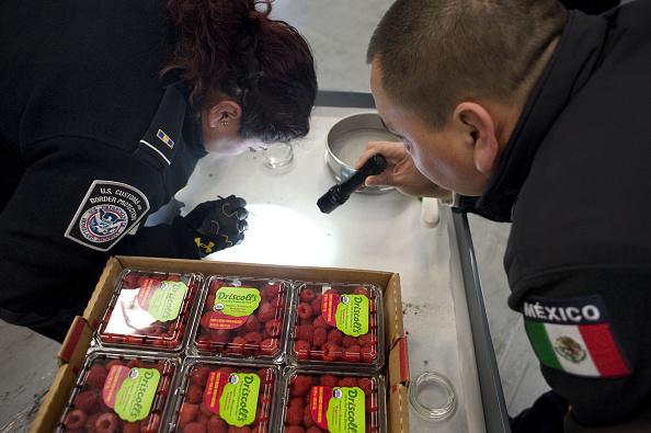 Agentes aduanales verifican productos mexicanos de exportación