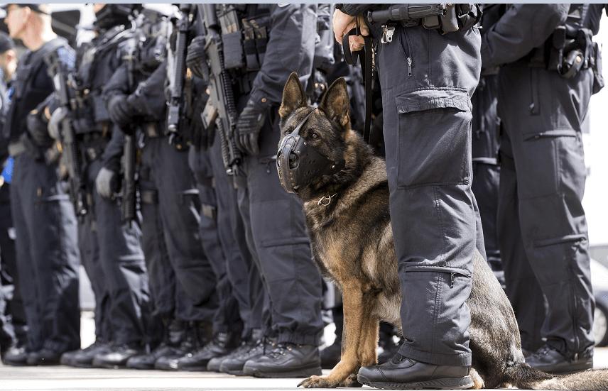 Policias vigilan seguridad durante cumbre del G20
