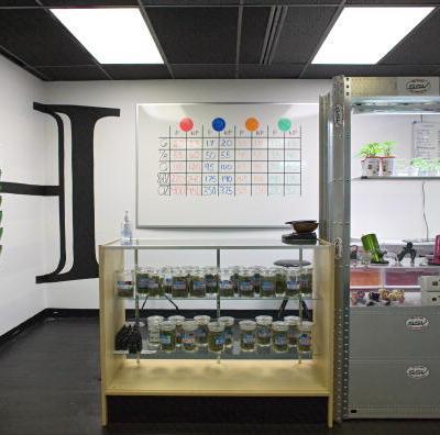 Colorado capta más de 500 mdd en impuestos por venta de marihuana