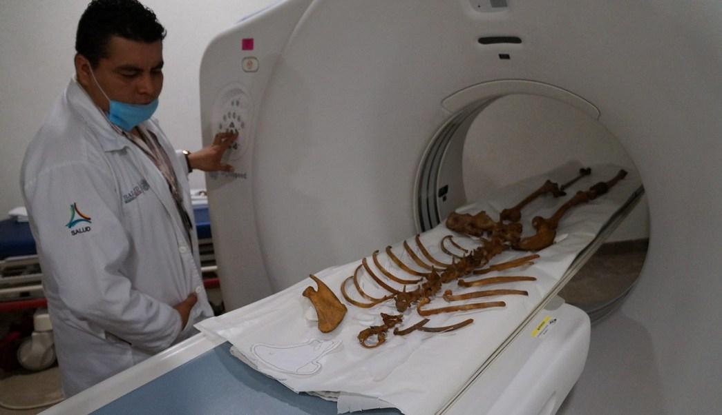 'Naia', el esqueleto más antiguo de América. (Notimex)