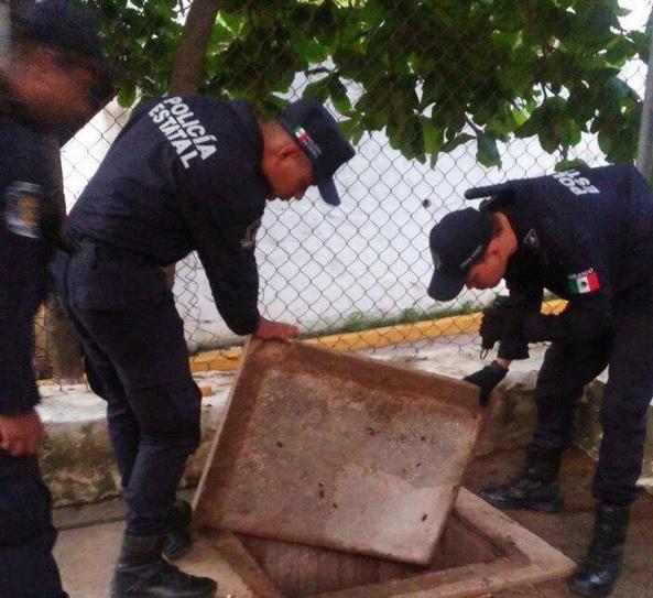 Operativo, Inspeccion, Cereso, Penal de Acapulco, Las Cruces