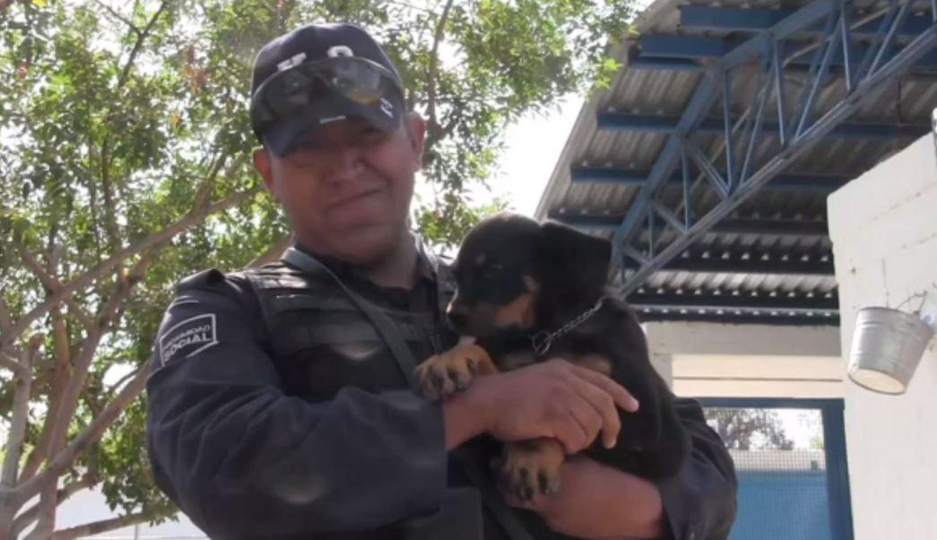Policia municipal de aguascalientes carga un perro
