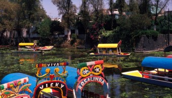 Ley Seca, Xochimilco, Venta De Alcohol, Fiestas Patronales, Noticias, Noticieros T
