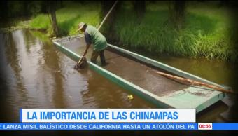 Importancia Chinampas Ximena Cervantes Reportaje