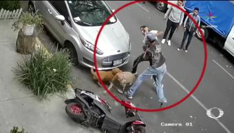 Nuevo caso de ataque pitbull CDMX