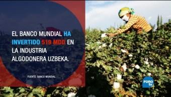 Uzbekistán la esclavitud en tiempos modernos