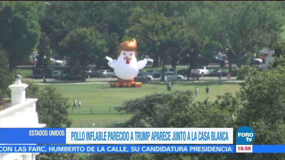 Pollo Trump aparece en la Casa Blanca en Washington