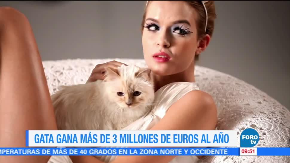 Gata, gana, 3 millones, euros