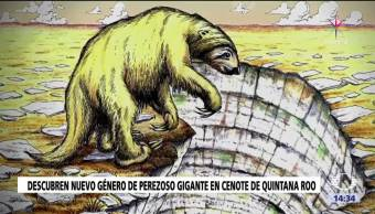 INAH restos perezoso gigante cenote Quintana