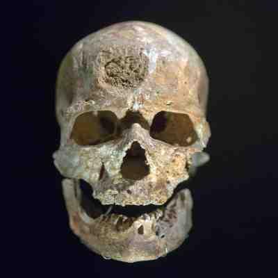 ¿Cuál es el origen del ser humano?