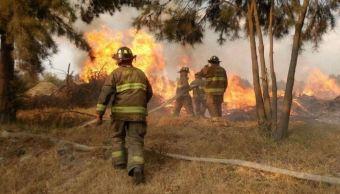 bomberos ayudan a sofocar un incendio forestal