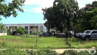 Suman seis cuerpos hallados en fosa clandestina en Acapulco