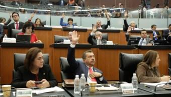 permanente declara constitucional reformas materia justicia cotidiana
