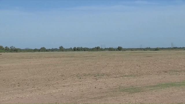 Se acaba el trabajo en los campos del sur de Sonora