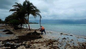 Un trabajador limpia la playa tras el paso de Franklin. (Reuters)