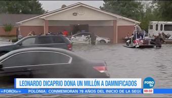 Loespectaculardeme Leonardo Dicaprio Dona Millón Damnificados