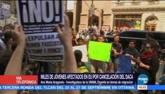México Apoyo Real Dreamers Ana María Aragonés Investigadora De La Unam