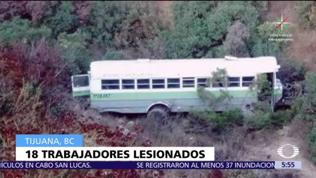 Camión, cae, barranco, Tijuana