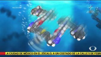Nanorobots contra el cáncer descubrimiento médico